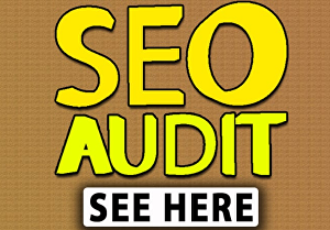 I will Do Complete SEO Website  Audit Report