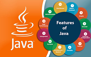 I will do any task related to JAVA