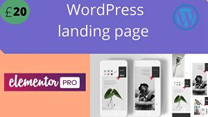 I will Customize a unique WordPress landing page using Elementor pro