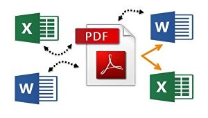 I will convert - PDF document to Word document