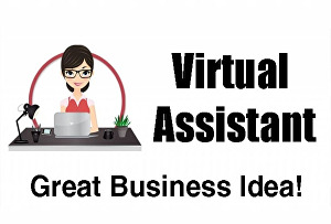 I will provide customer support service as a virtual assistant for your online business