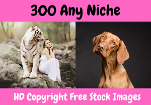 I will get 300 any niche high quality royalty-free stock images