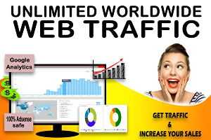 I will send 60,000 Real Geo Targeted Worldwide Website Traffic Visitors