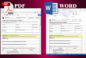 I will convert pdf to excel, word, google docs