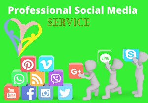 I will Be Your Professional Social Media Marketing Manager