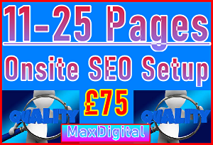 I will Setup Maximum 25 Pages with Onsite SEO Importance