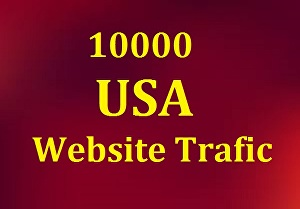 I will Give 10000 HQ USA Website Traffic visitors , Safe and Secure  For Your Site