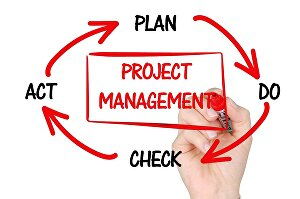 I will write a 300 word article or blog post on project management