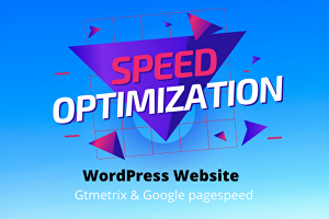 I will Optimize your WordPress Website speed on Gtmetrix and Google Pagespeed