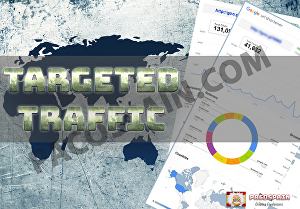 I will send TARGETED Traffic to your Site or Blog for 1 month
