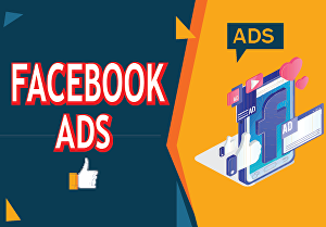 I will set up Facebook ads campaign and manage your business