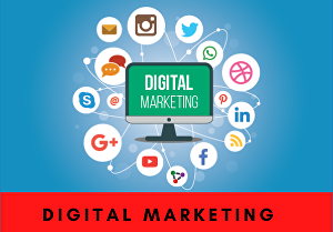 I will manage your digital marketing completely