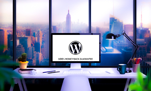 I will create a gorgeous wordpress website for your business