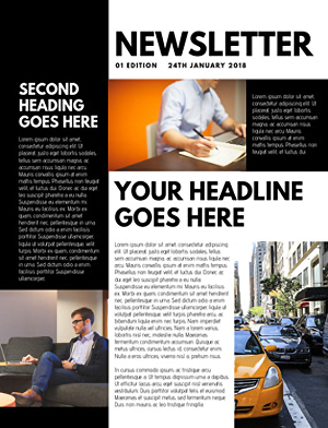 I will create a web page from your email newsletter design
