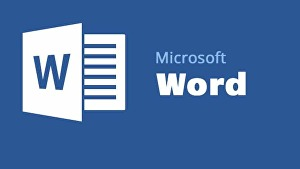 I will Edit word documents