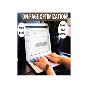 I will do on page seo and technical optimization of your site