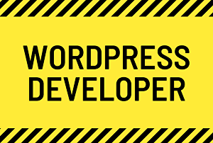 I will design creative wordpress website for your business