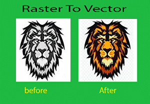 I will provide high Quality vector tracing manually