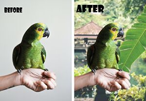 I will do photo editing, photo retouching and removal of background or unwanted object from backg