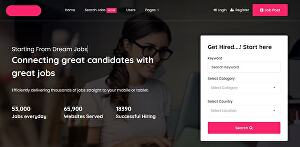 I will make job board, recruitment, or agency website with SEO