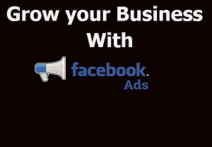 I will manage and optimize your Facebook ads campaigns