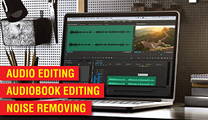 I will  do audio edit within 24 hours