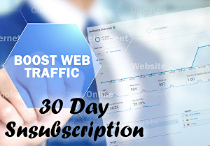 I will drive 200+ daily real visitors, targeted web traffic