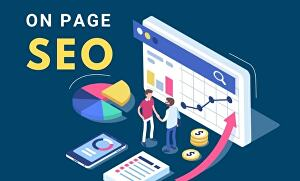I will provide on page SEO service for your page ranking