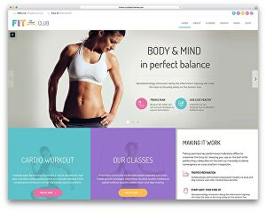 I will do responsive wordpress landing page with elementor