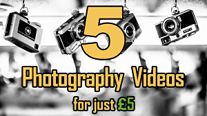 I will create all 5 Photography logo intro videos