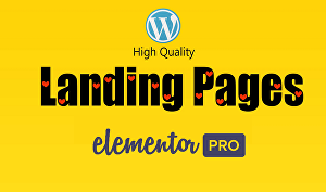 I will design responsive WordPress landing page, sales page with Elementor pro