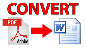 I will convert your PDF file to Ms Word
