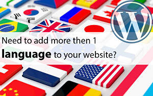 I will Translate WordPress Website eCommerce online store with Multilingual