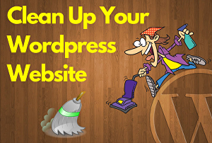 I will clean up your wordpress website