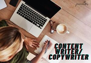 I will write an interesting, fun and SEO optimised blog post or article