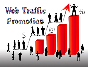 I will drive USA targeted 1000-5000 quality traffic to your website