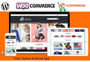 I will develop WordPress ecommerce website or online store with woocommerce