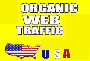 I will Send 5000+ Real Human Traffic from USA