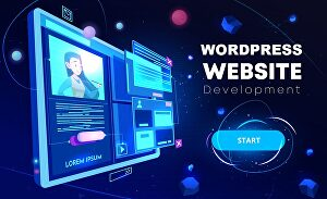 I will Customize your WordPress website and make changes