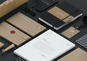 I will design full corporate  identity kit for you