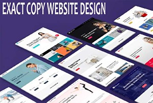 I will do Responsive New Brand Website design for your Business