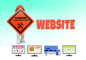I will Build modern wordpress website and ecommerce online store with Domain & Hosting