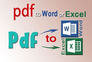 I will convert your pdf file to word or excel